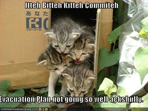 Itteh Bitteh Kitteh Commiteh  Evacuation Plan not going so well ackshully.