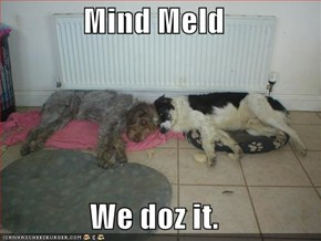 Mind Meld  We doz it.