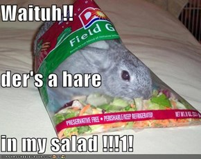 Waituh!! der's a hare in my salad !!!1!