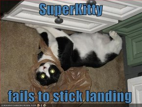 SuperKitty     fails to stick landing