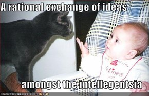 A rational exchange of ideas  amongst the intellegentsia