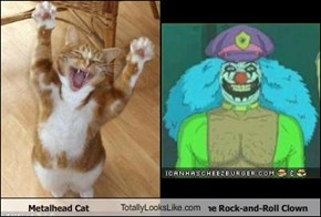 Metalhead Cat TotallyLooksLike.com Dr. Rockzo the Rock-and-Roll Clown