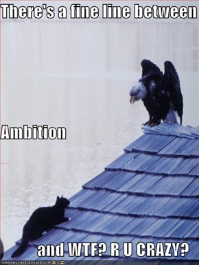 There's a fine line between Ambition  and WTF? R U CRAZY?