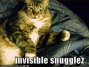 invisible snugglez