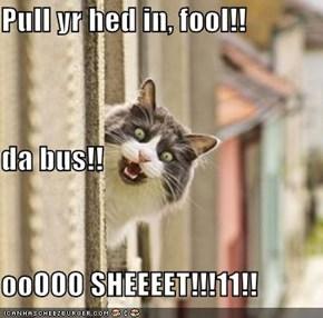 Pull yr hed in, fool!! da bus!! ooOOO SHEEEET!!!11!!