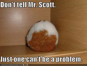 Don't tell Mr. Scott.  Just one can't be a problem.