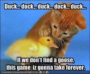 Duck... duck... duck... duck... duck...