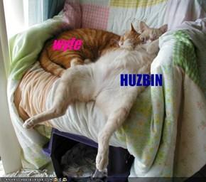 HUZBIN