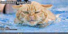 Sumbodiez gonna die  for dis...........
