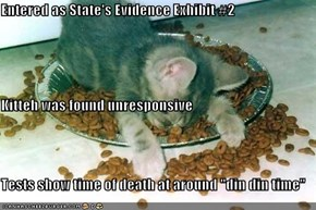 "Entered as State's Evidence Exhibit #2 Kitteh was found unresponsive Tests show time of death at around ""din din time"""