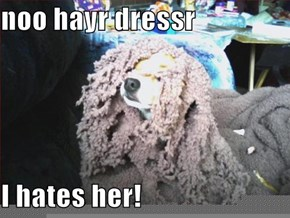 noo hayr dressr  I hates her!