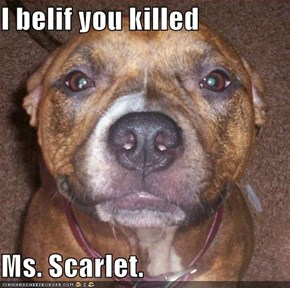 I belif you killed  Ms. Scarlet.