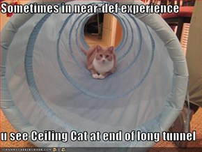 Sometimes in near-def experience  u see Ceiling Cat at end of long tunnel