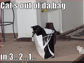 Cat's out of da bag  in 3...2...1...