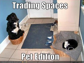 Trading Spaces  Pet Edition