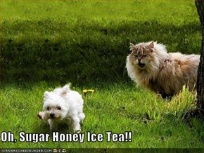 Oh, Sugar Honey Ice Tea!!