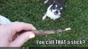 You call THAT a stick?