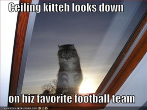 Ceiling kitteh looks down      on hiz favorite football team