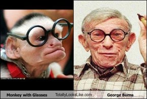 Monkey with Glasses TotallyLooksLike.com George Burns