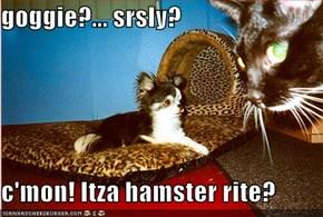 goggie?... srsly?  c'mon! Itza hamster rite?