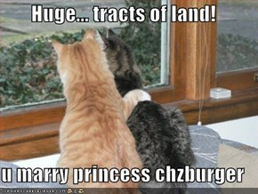 Huge... tracts of land!  u marry princess chzburger
