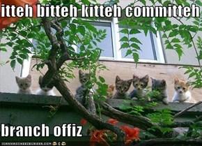 itteh bitteh kitteh committeh  branch offiz