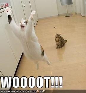 WOOOOT!!!