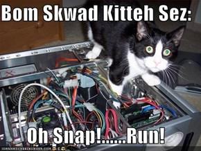 Bom Skwad Kitteh Sez:  Oh Snap!......Run!