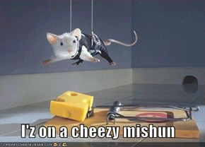I'z on a cheezy mishun