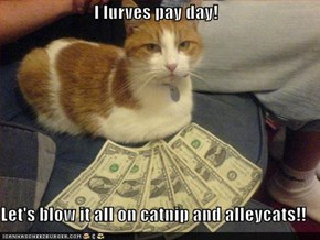 I lurves pay day!  Let's blow it all on catnip and alleycats!!