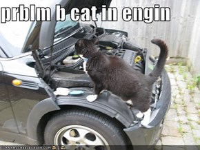 prblm b cat in engin