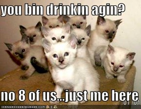 you bin drinkin agin?  no 8 of us...just me here