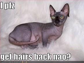 I plz  get hairs back nao?