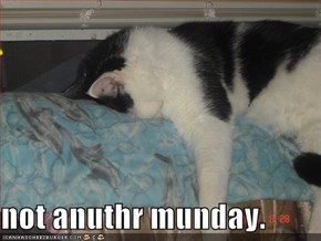 not anuthr munday.
