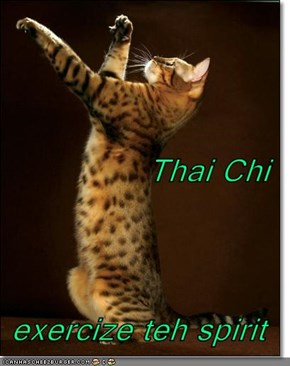 Thai Chi exercize teh spirit