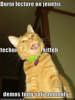 Durin lecture on jenetix, techur                      kitteh demos tung-roly anomoly