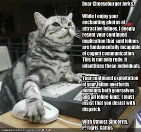 Dear Cheeseburger Jerks,While I enjoy your enchanting photos of attractive felines, I deeply resent your continued implication that said felines are fundamentally incapable of cogent communication.  This is not only rude, it infantilizes these individua
