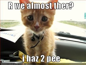 R we almost ther?  i haz 2 pee