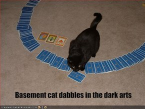 Basement cat dabbles in the dark arts
