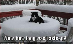 Wow, how long was I asleep?