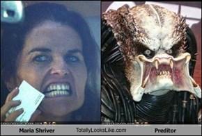 Maria Shriver TotallyLooksLike.com Preditor