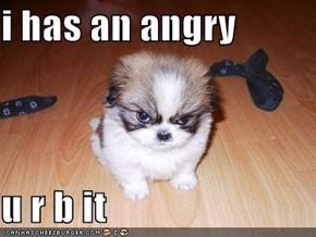 i has an angry  u r b it