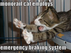 monorail cat employs  emergency braking system