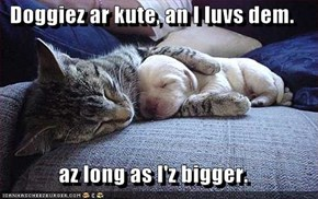 Doggiez ar kute, an I luvs dem.  az long as I'z bigger.