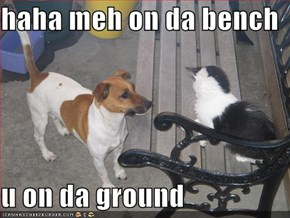 haha meh on da bench  u on da ground