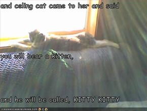 and celing cat came to her and said you will bear a kitten, and he will be called, KITTY KITTY