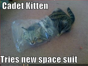 Cadet Kitten  Tries new space suit