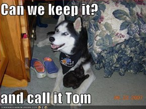 Can we keep it?  and call it Tom