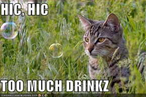 HIC, HIC  TOO MUCH DRINKZ