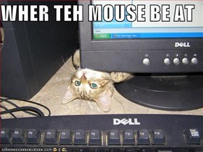 WHER TEH MOUSE BE AT